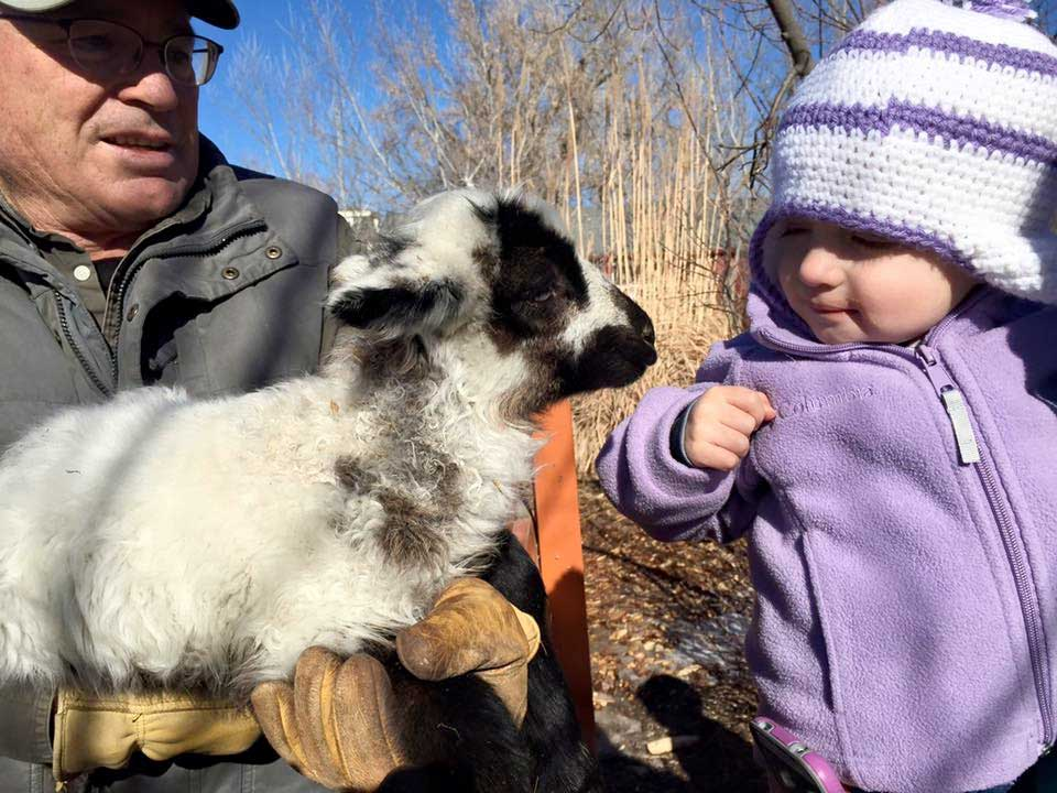 Baby and a goat