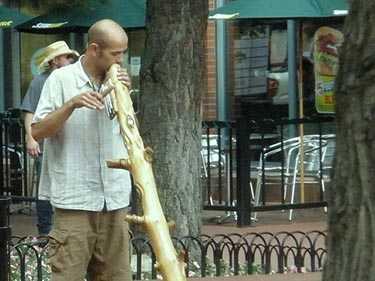 Musician on Pearl Street