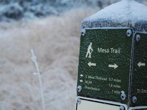 mesa-trail-sign-frozen-600x450