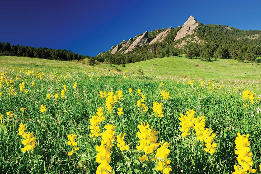 Golden banner and the Flatirons